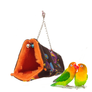 nidos agapornis